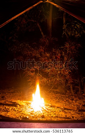 Bonfire and camping tent in the forest