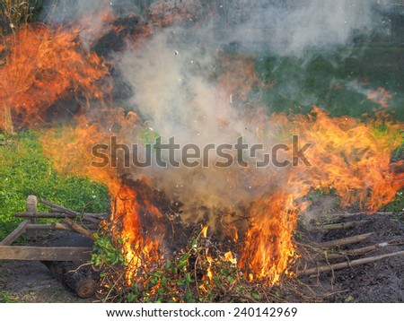 Bonfire in a meadow amidst the grass
