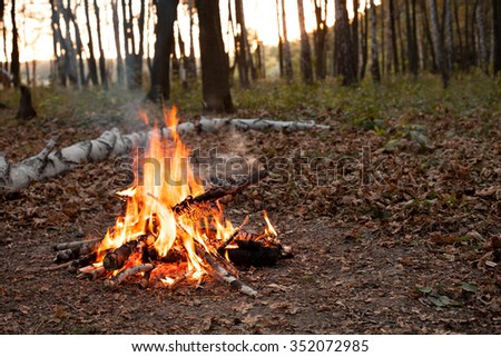 Bonfire in autumn