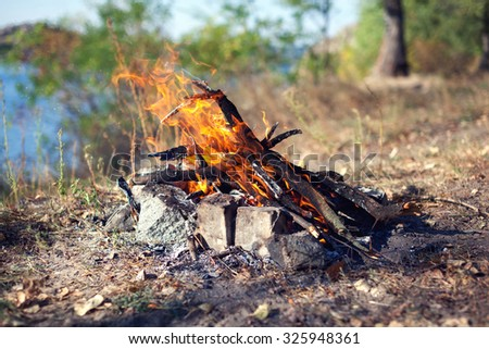 Bonfire in the autumn forest. Coals of fire. Background - stock photo