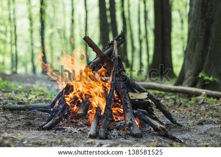 Bonfire in the spring forest - stock photo