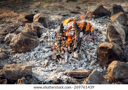 Bonfire in the spring forest. Coals of fire. Ukraine - stock photo