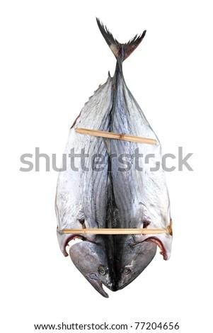 bonito tuna salted dried fish Mediteraranean sarda style [Photo Illustration] - stock photo