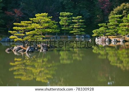 Bonsai like trees on japanese garden - stock photo