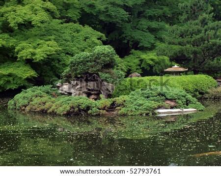 Bonsai Tree at the Japanese Garden - stock photo