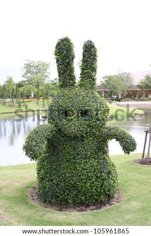 Bonsai tree like an animal in the public park - stock photo