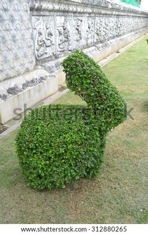 Bonsai tree like an animal in the public park - stock photo