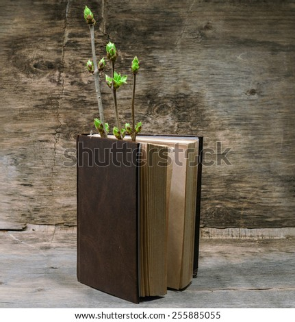 book and a branch with young green leaves - stock photo