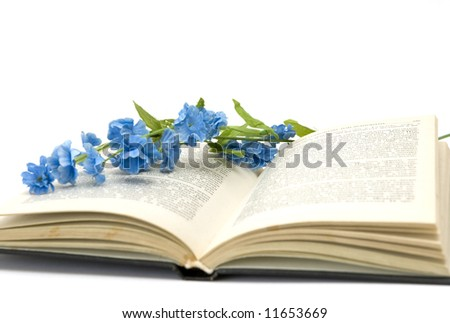 book and flower - stock photo