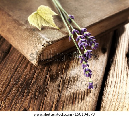 book and flowers  - stock photo
