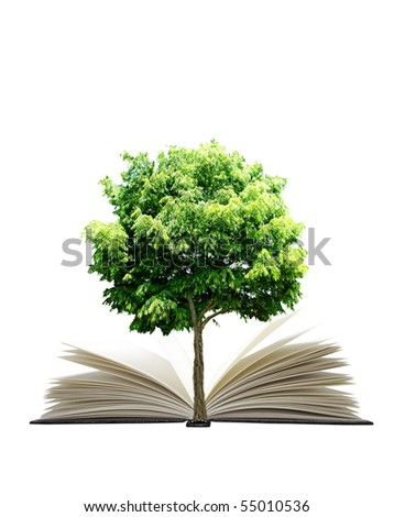 Book and plant isolated on white background - stock photo