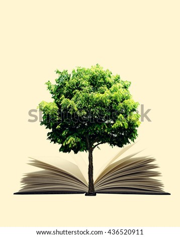Book and plant isolated on white background. 3D illustration