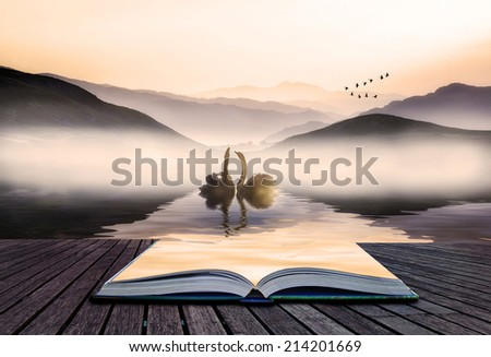 Book concept Beautiful romantic image of swans on misty lake with mountains in background landscape - stock photo