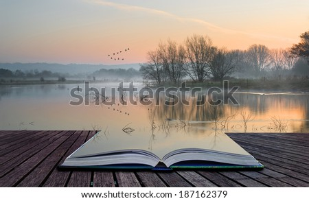 Book concept Beautiful tranquil landscape of lake in mist - stock photo