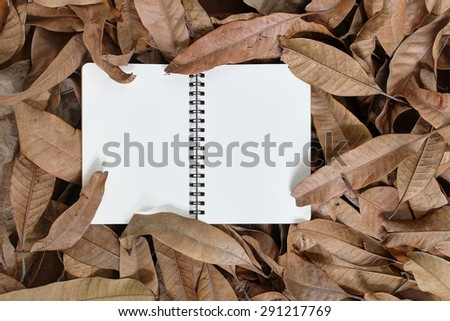Book in dry leaves - stock photo