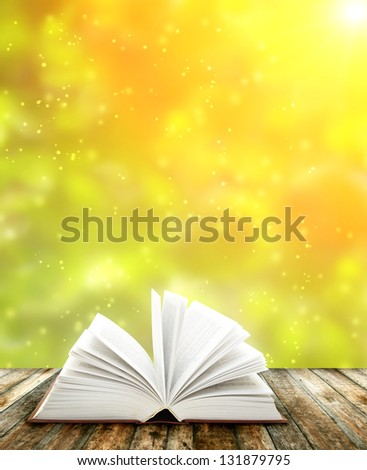 Book on wooden planks - stock photo
