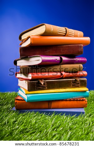 Books in the grass on a blue background.