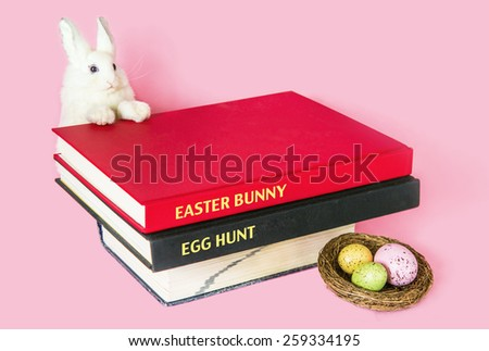Books with a rabbit and a nest of eggs, isolated on pink backgrounds. Symbolic concept of legendary stories, fairytale about easter bunny and easter egg hunt.  Macro close up. - stock photo