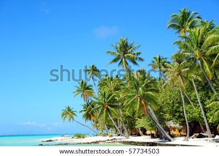 bora bora on a sunny day - stock photo