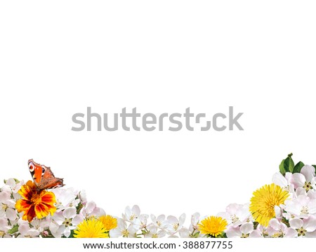 Border from yellow and white flowers with a butterfly on a white background isolated