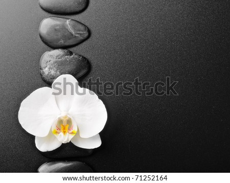 border made from black stones and orchid - stock photo