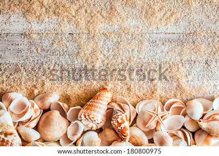 Border of assorted seashells including a cone, bivalves conch and a small starfish on sandy wooden boards with copyspace in a conceptual nautical background - stock photo
