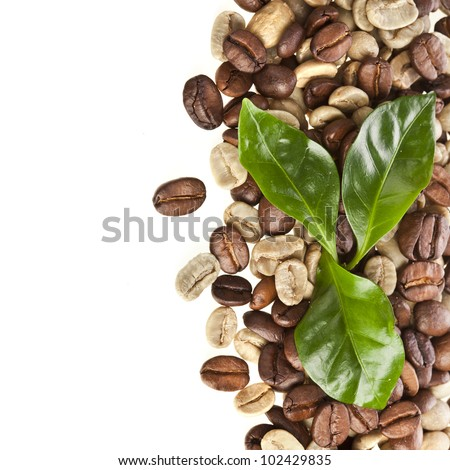 Border of coffee beans grains with leaves of coffee tree on white - stock photo