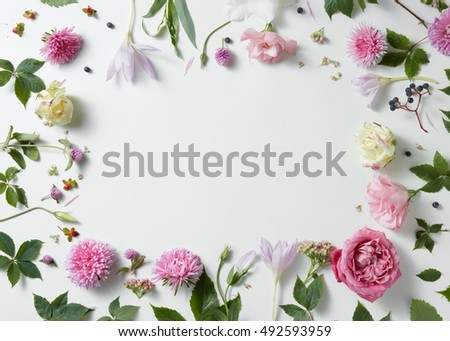 border of pink and white roses with green leaves