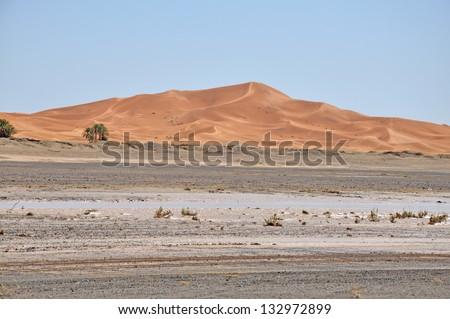 Border of Sahara - stock photo