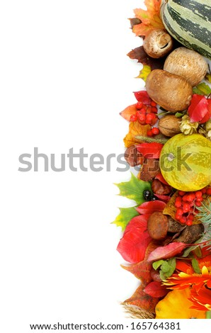 Border of Various Autumn Leafs, Vegetables, Berries, Mushrooms and Nuts isolated on white background. Vertical View