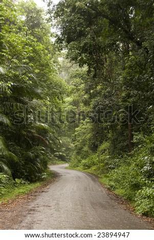 Border Range National Park, New South Wales, Australia - stock photo