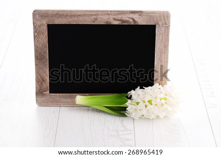 border with beautiful hyacinth - flowers and plants - stock photo