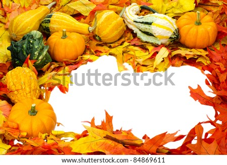 Border with fall leaves small pumpkins and decorative gourds isolated on white