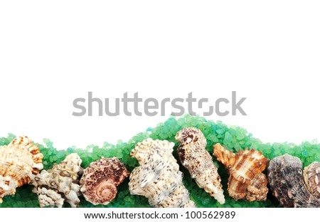 Border with seashells and green sea salt, with copy space