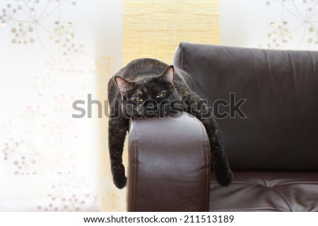 boring - stock photo