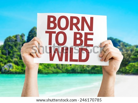Born to be Wild card with a beach background - stock photo