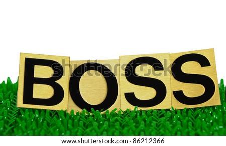 boss text - stock photo