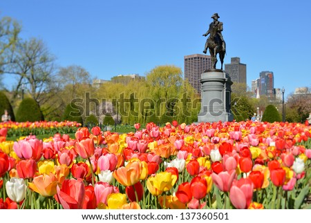 Boston Public Garden. George Washington Statue surrounded by tulips, tourists and beautiful spring colors. - stock photo