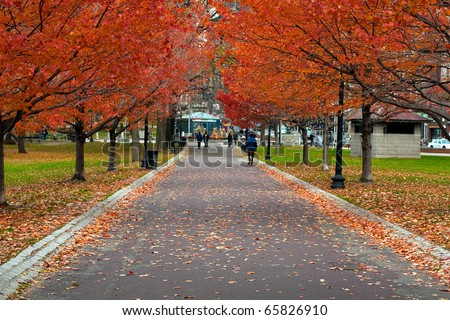 Boston Public Garden in the Fall Season. - stock photo