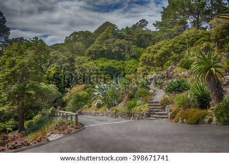 Botanic garden in Wellington, New Zealand - stock photo