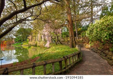 Botanic Garden Walkway - stock photo