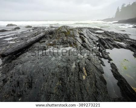 Botanical Beach, Juan de Fuca Trail, Port Renfrew, BC, Vancouver Island Canada - stock photo