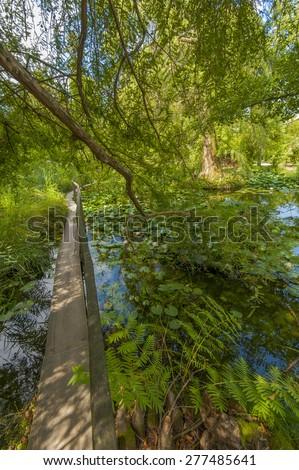 botanical Garden - stock photo