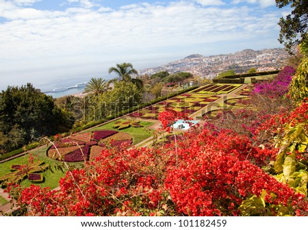 Botanical Garden in Funchal city, Madeira island, Portugal - stock photo