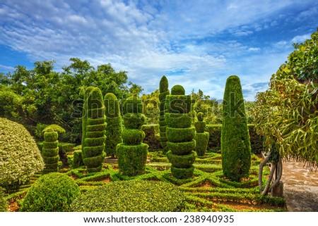 Botanical garden Monte, Funchal, Madeira island, Portugal - stock photo