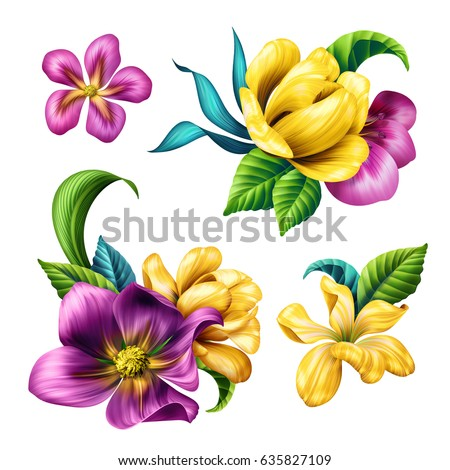 Botanical Illustration Beautiful Tropical Flowers Floral Clip Art Design Elements Set Isolated
