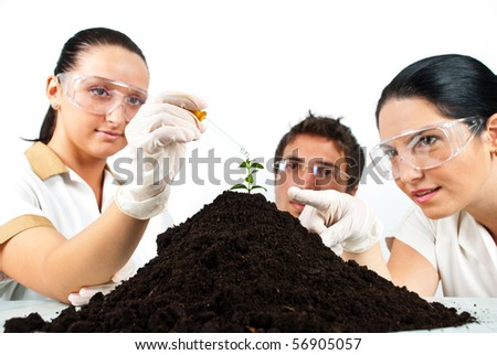 Botanical scientist team  in laboratory making experiments on a plant in soil , a scientist woman pointing to plant while her colleague pouring liquid with a pipette - stock photo