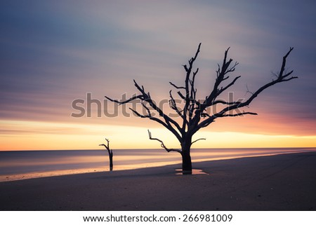 Botany Bay beach at cloudy sunset, Edisto Island, South Carolina, USA - stock photo