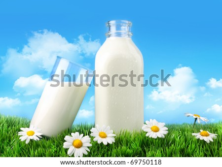 Bottle and glass of milk with grass, daisies and sky - stock photo