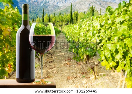 Bottle and glass of red wine on vineyard background - stock photo